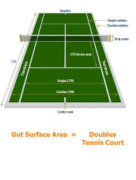 Image result for tennis court hidden in your gut!