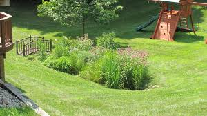 Small Picture Rain Garden Design Construction in Ann Arbor MI Creating
