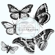 Fototapeta Nastavit Náčrtek Tetování Motýl