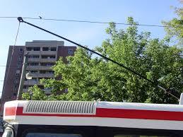 trolley pole