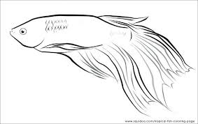 Betta Fish Coloring Page Fish Coloring Pages Printable Tropical Page