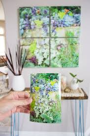 how to turn a succulent photo into canvas wall art