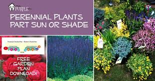 Small Picture Perennial Garden Plans for Partial Sun or Shade Pretty Purple Door