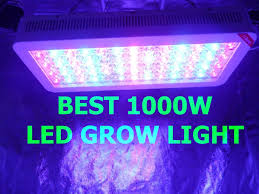 Amazon Led Grow Light Reviews 10 Best 1000w Led Grow Light 2020 For Grow Room Review
