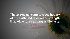 "Quotes About The Beauty Of The Earth Best of Rachel Carson Quote ""Those Who Contemplate The Beauty Of The Earth"