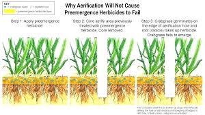 Nutsedge Herbicides Nutsedge Killer Lowes Labridupecheur Com
