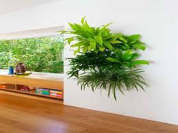 ... Surprising Design Indoor Living Wall Planter Amazing Planters Http  Lovelybuilding Com ...