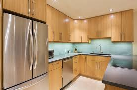 beech wood kitchen cabinets: often classified as a medium to hard wood beech is a rather inexpensive choice for kitchen cabinets beechwood takes a stain well so you can find a