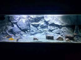 Aquarium Backgrounds Slim Aquarium Backgrounds 3d Backgrounds Aquadecor