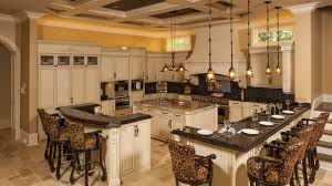 traditional contemporary kitchens. Upscale Kitchen + Bath Cabinetry   Traditional, Contemporary, And  Transitional Styles - Nordic Kitchens Baths, Inc Traditional Contemporary Kitchens I