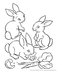 rabbits coloring pages coloring pages of a rabbit coloring pages bunny coloring page of a rabbit rabbits coloring pages