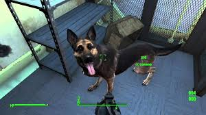 fallout 4 cheats new dogmeat duplication glitch discovered in