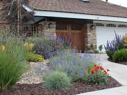 Small Picture Top 25 best California native garden ideas on Pinterest
