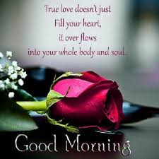Good Morning My True Love Pictures Photos And Images For Facebook Impressive Good Morning My