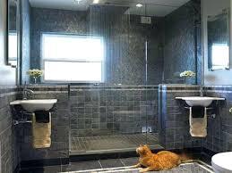 walk in shower for small bathroom walk in shower for small bathroom pretentious 7 best walk walk in shower for small