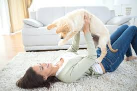 best area rugs for pets best area rugs for dogs rug designs clean area rug cat urine