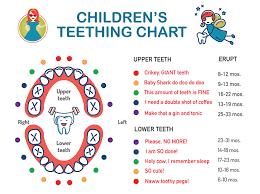 Baby Teething Signs Symptoms Plus A Handy Teething Chart