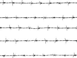 barbed wire fence png. Modren Wire Barbed Fencing Wire On Fence Png W