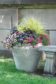 Best 25 Cheap Plant Pots Ideas On Pinterest  Plastic Pots Cheap Container Garden Plans Flowers