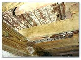 Awesome Mildew Smell In House Musty Smell In Bedroom What Solutions To Remove Musty  Smell From Basement . Mildew Smell In House ...