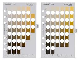 Munsell Soil Chart Free Download 14 Munsell Soil Color Chart Download Munsell Soil Color