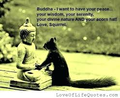 Buddha Quotes On Death And Life Best Buddha Quotes On Life Formidable Awesome Quotes On Life Photographs