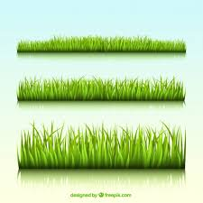 green grass field animated. Green Grass Borders Field Animated