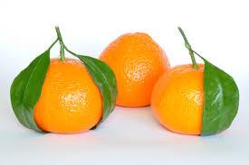 Mandarin Tangerines 24 Fun And Fascinating Facts About The Mandarin Orange