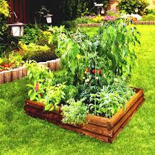 raised vegetable garden plans outdoor waco layout designing