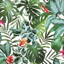 tempaper rainforest self adhesive removable wallpaper ra537 the