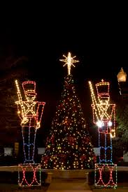 tree lighting ideas. miller lights loves decorating trees both inside and outside we love coming up with ideas tree lighting