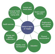 Social Determinants Of Health | Flow Chart Example. Warehouse ...