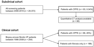 Pathophysiology Of Emphysema Flow Chart Flow Chart Of Study Design And Patient Population Cpfe