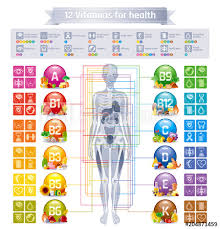 Mineral Vitamin Supplement Human Body Food Health Benefit