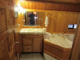Log Cabin Bathroom Decor Dream Log Cabin Bathroom Ronikordis