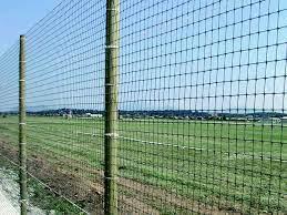 50mm plastic garden netting 1 8m