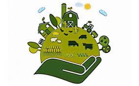 Risultati immagini per aiuti al settore agricolo