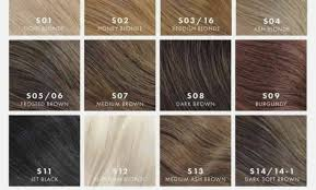 Raquel Welch Wigs Color Chart 79 Frosted Hair Color Pictures Ihairstyleswm Com