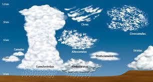 Cloud Chart Craving4more