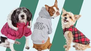 The best <b>dog winter</b> coats of 2020 | CNN Underscored
