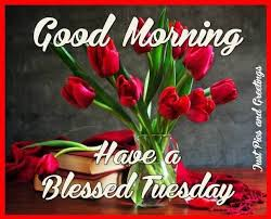 Good Morning Tuesday Quotes Best of Pretty Good Morning Tuesday Blessings Quote Pictures Photos And