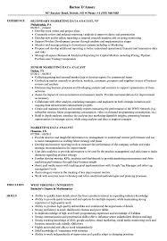 Marketing Data Analyst Resume Samples Resume Examples