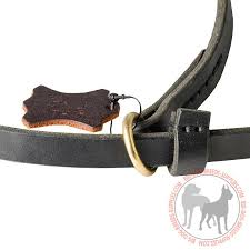 dog shows leash choke collar with floating brass o ring