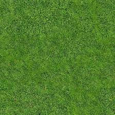 Free High Quality Tileable Seamless Grass Texture Free High Quality