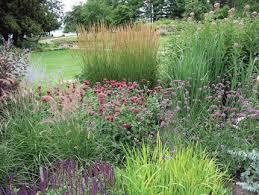 Small Picture Top 25 best Sun garden ideas on Pinterest Full sun garden Full