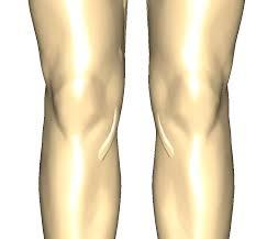 「膝関節と運動学」の画像検索結果