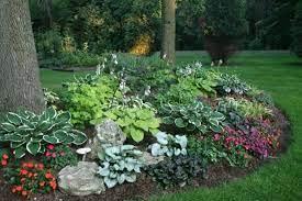 hosta gardens garden layout vegetable