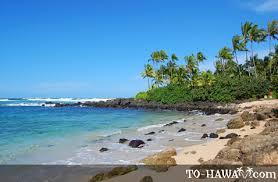 Laniakea Beach Oahu