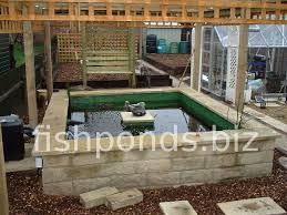 building a koi pond finished pond picture 2