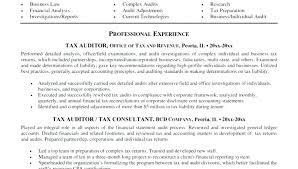 Audit Director Sample Resume Podarki Co
